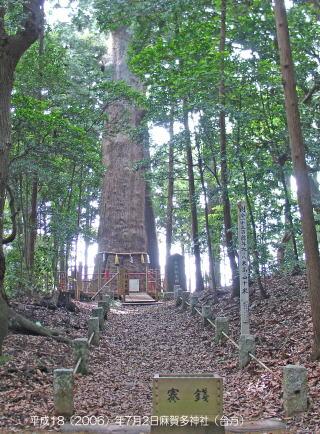 東日本一と云われる大杉(御神木) 東日本一と云われる大杉(御神木) 今から約千三百七十年前(聖徳